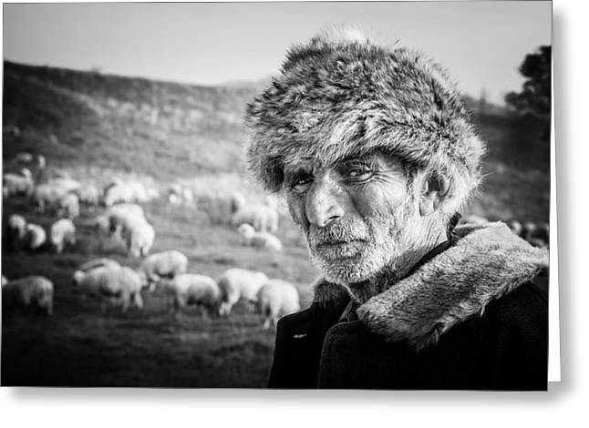 Shepherds Photographs Greeting Cards - The Shepherd Greeting Card by Cornel Mosneag