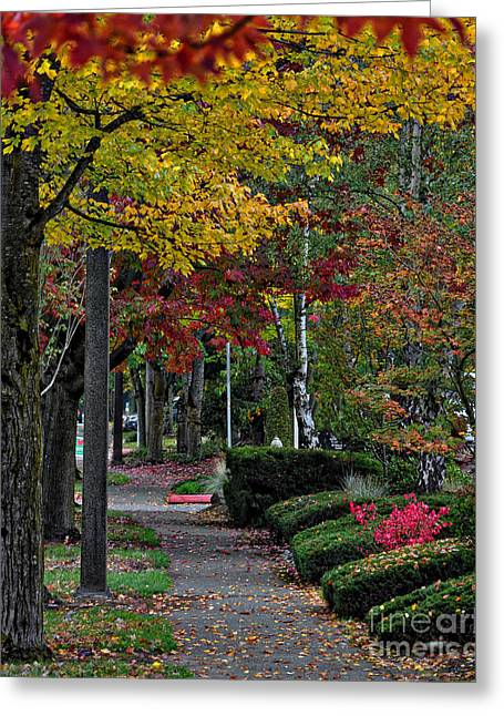 Fall Colors Greeting Cards - The Sidewalk And Fall Greeting Card by Kirt Tisdale