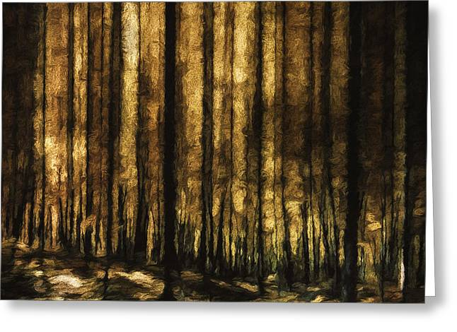 The Silent Woods Greeting Card by Scott Norris