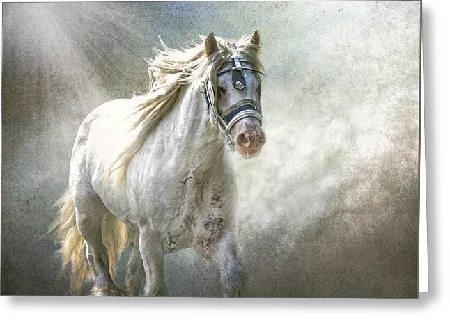 Gypsy Greeting Cards - The Silver Cob Greeting Card by Brian Tarr