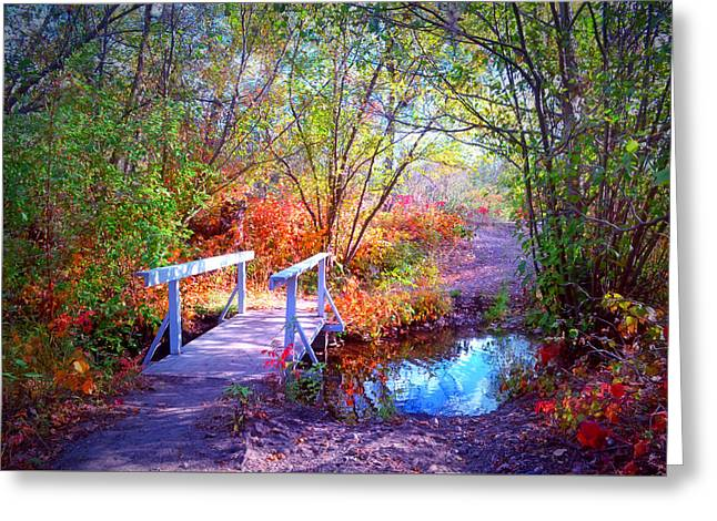 Puddle Greeting Cards - The Small Bridge at the Beginning of Autumn Greeting Card by Tara Turner