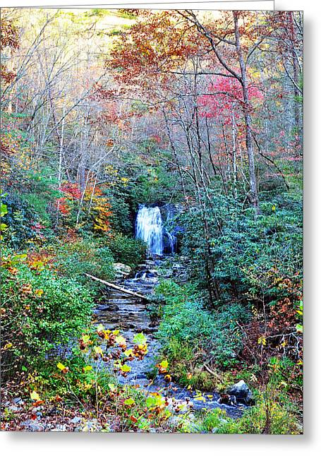 The Smokies Greeting Card by Brittany H