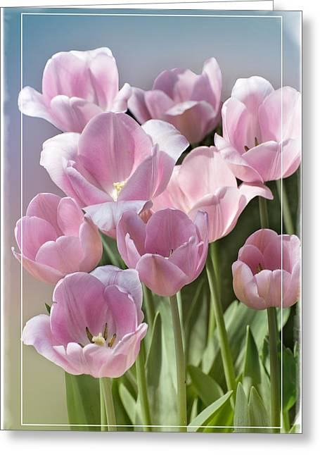 Subtle Colors Greeting Cards - The Soft Side of Spring Greeting Card by Lynn Bauer