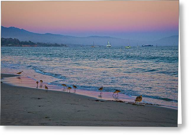 Water Vessels Greeting Cards - The Soft Side of Sunset Greeting Card by Lynn Bauer