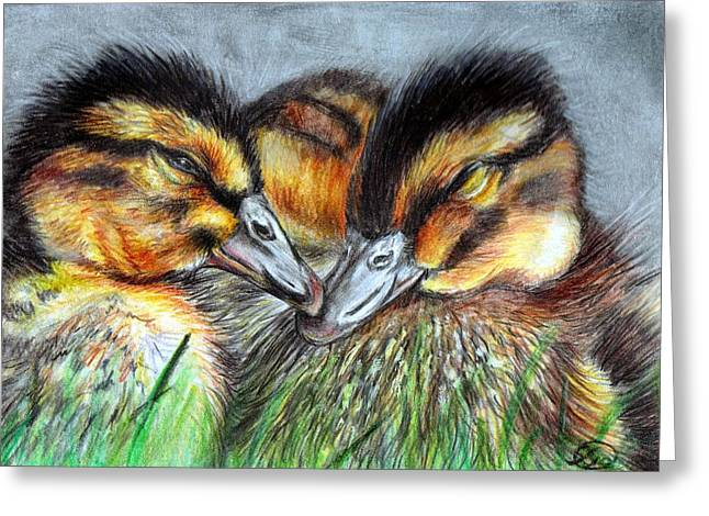 Ducklings Mixed Media Greeting Cards - The Softest Touch Greeting Card by Sarah Stanaland