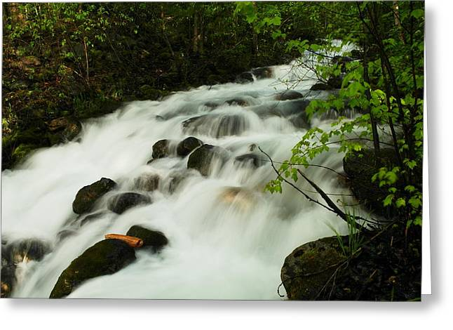 Water Flowing Greeting Cards - The softness of a stream Greeting Card by Jeff  Swan