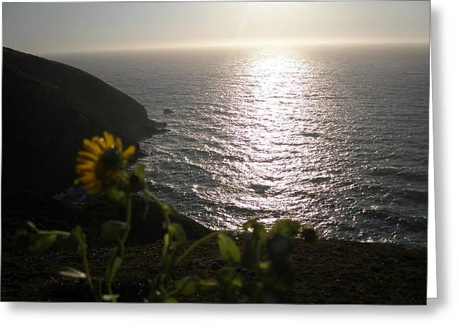 Waterlife Greeting Cards - The Song Of A Flower Greeting Card by Kicking Bear  Productions