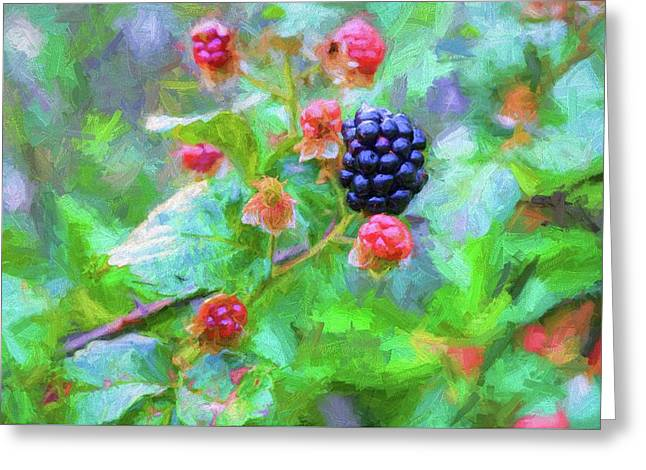 The South Georgia Blackberry Greeting Card by JC Findley