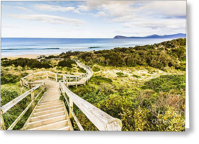 The Spit Lookout Greeting Card by Jorgo Photography - Wall Art Gallery