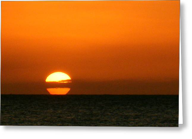 Rincon Greeting Cards - The Spot Greeting Card by Mary Anne Minerva