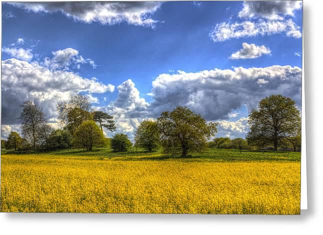 Farmers Field Greeting Cards - The Springtime Farm Greeting Card by David Pyatt