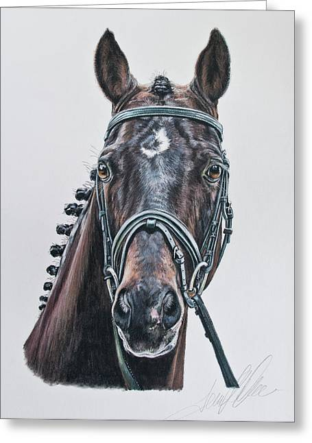 Dressage Pastels Greeting Cards - The Stallion Don Principe  Greeting Card by Terry Kirkland Cook
