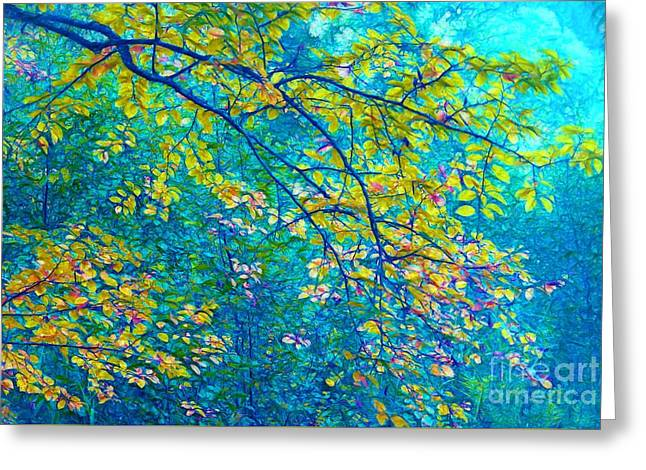 The Star Of The Forest - 773 Greeting Card by Variance Collections