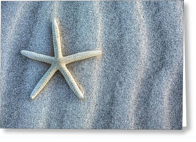 Star Fish Greeting Cards - The Stars and Stripes Greeting Card by JC Findley