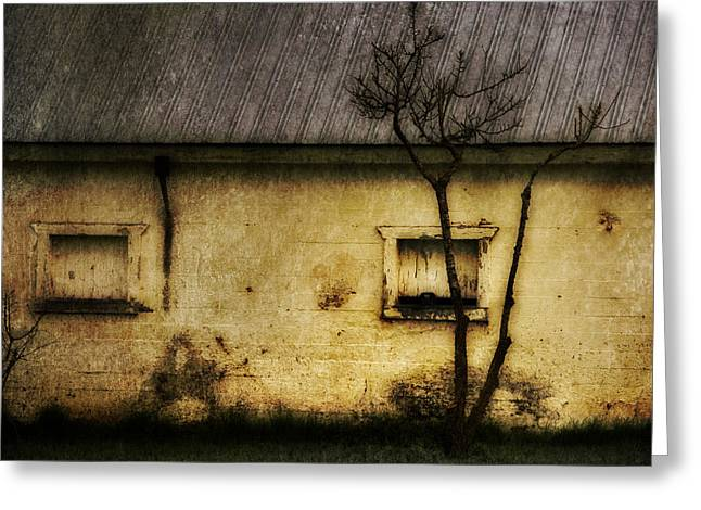 Outbuildings Greeting Cards - The Storehouse Greeting Card by T J Hankins