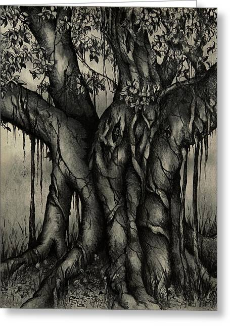 Ficus Aurea Greeting Cards - The Strangler Greeting Card by Rachel Christine Nowicki