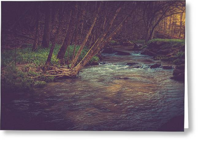 Stream Greeting Cards - The Stream Greeting Card by Shane Holsclaw