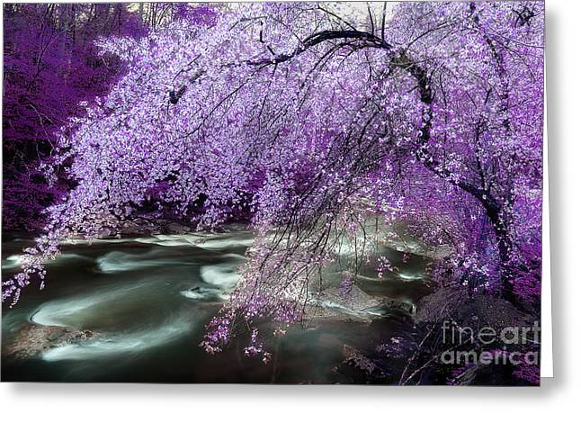 Overhang Greeting Cards - The Streams Healing Rhythm Greeting Card by Michael Eingle