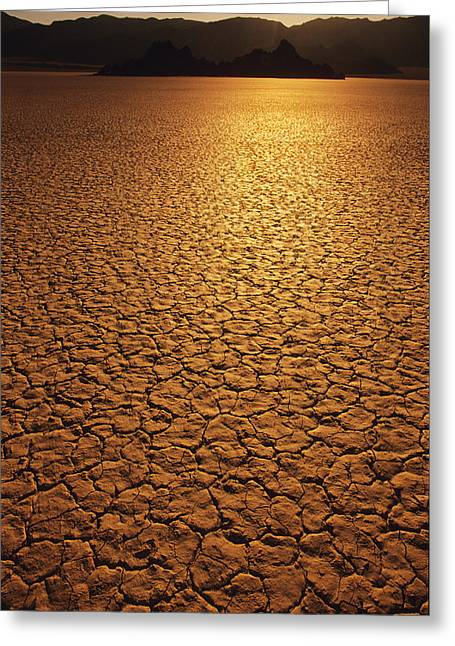 Dry Lake Greeting Cards - The Sun Reflects Off This Parched Lake Greeting Card by Bill Hatcher
