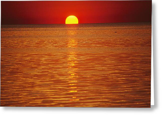 The Sun Sinks Into Pamlico Sound Seen Greeting Card by Stephen St. John