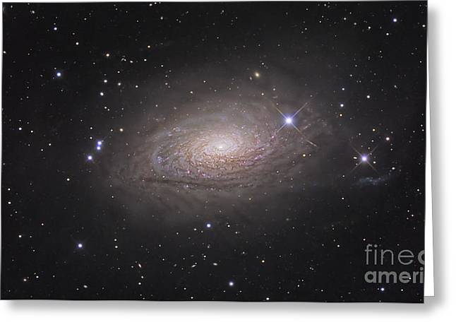Constellations Greeting Cards - The Sunflower Galaxy Greeting Card by R Jay GaBany