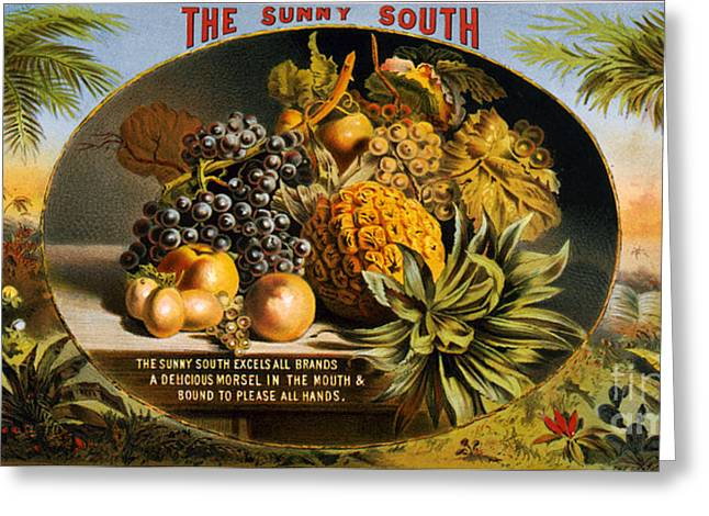 The Sunny South Vintage Fruit Label Greeting Card by Vintage