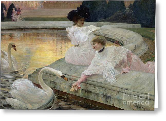 Feeding Greeting Cards - The Swans Greeting Card by Joseph Marius Avy