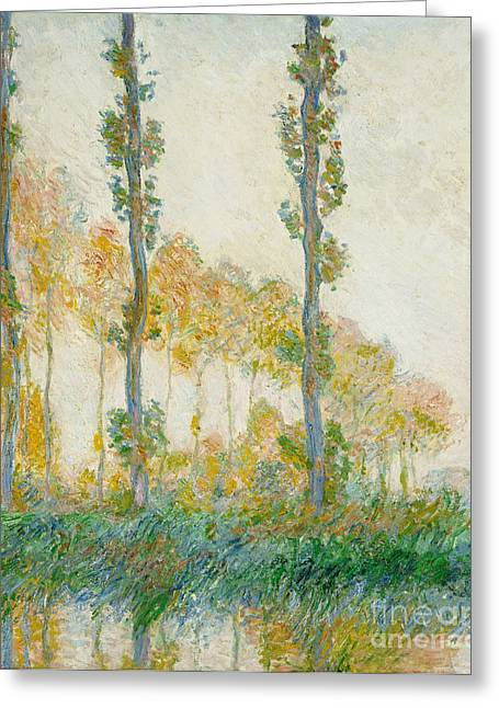 Reflecting Water Greeting Cards - The Three Trees Greeting Card by Claude Monet