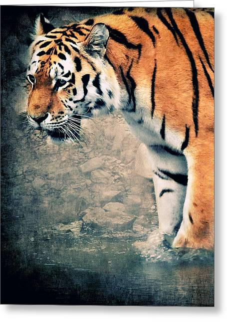 White River Mixed Media Greeting Cards - The Tiger Greeting Card by Angela Doelling AD DESIGN Photo and PhotoArt