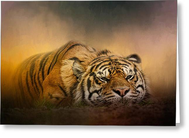 Bangladesh Greeting Cards - The Tiger Awakens Greeting Card by Jai Johnson