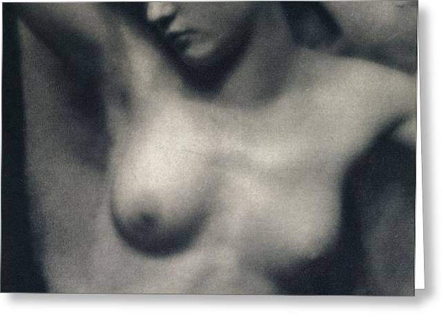 The Torso Greeting Card by White and Stieglitz