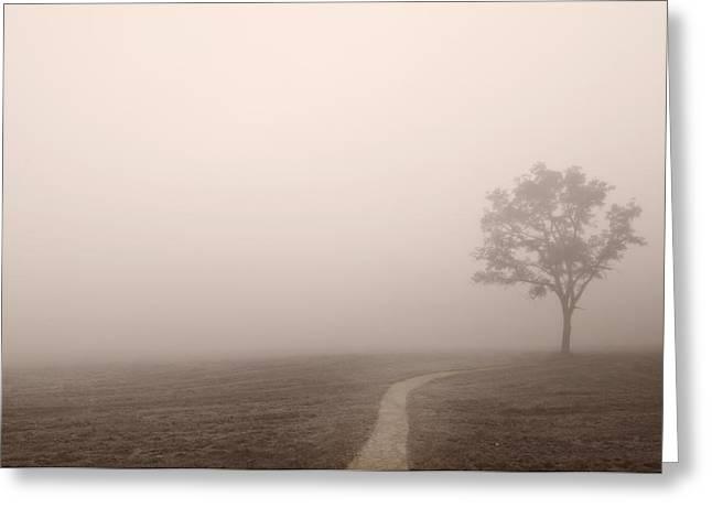 Smoky Greeting Cards - The Trail Greeting Card by Steve Gadomski