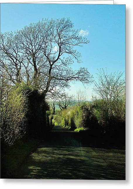Whalley Greeting Cards - The Tree in the Lane Greeting Card by CL Redding