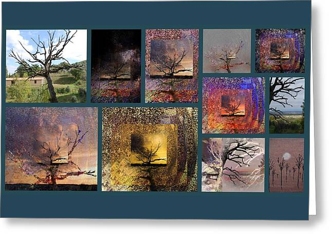 Gnarly Greeting Cards - The Tree Layers Collection Story Board Greeting Card by Dorothy Berry-Lound
