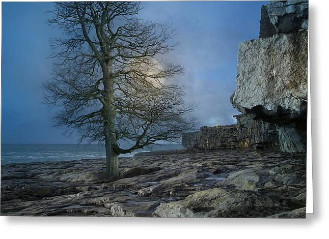 The Tree Of Inis Mor Greeting Card by Betsy C Knapp