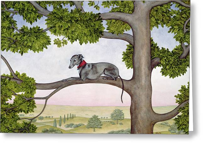 Climb Tree Greeting Cards - The Tree Whippet Greeting Card by Ditz