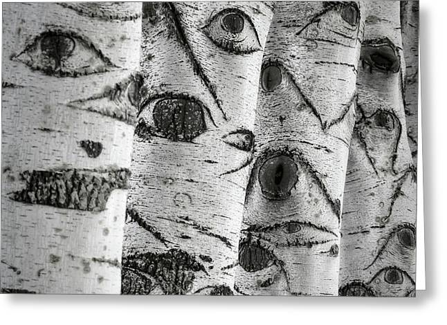 The Trees Have Eyes Greeting Card by Wim Lanclus