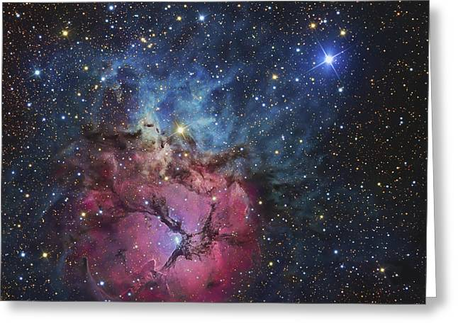 Starbirth Greeting Cards - The Trifid Nebula Greeting Card by R Jay GaBany