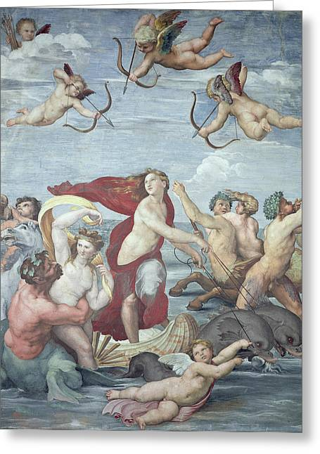 Embrace Greeting Cards - The Triumph of Galatea Greeting Card by Raphael