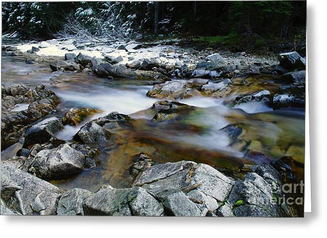 Clear Flowing Stream Greeting Cards - The Trotting Song Of Small Rapids  Greeting Card by Jeff  Swan