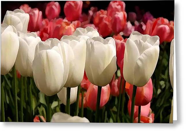 The Tulip Bloom Greeting Card by Lanjee Chee