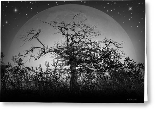 Creepy Digital Greeting Cards - The Twilight Hour Greeting Card by Brian Wallace