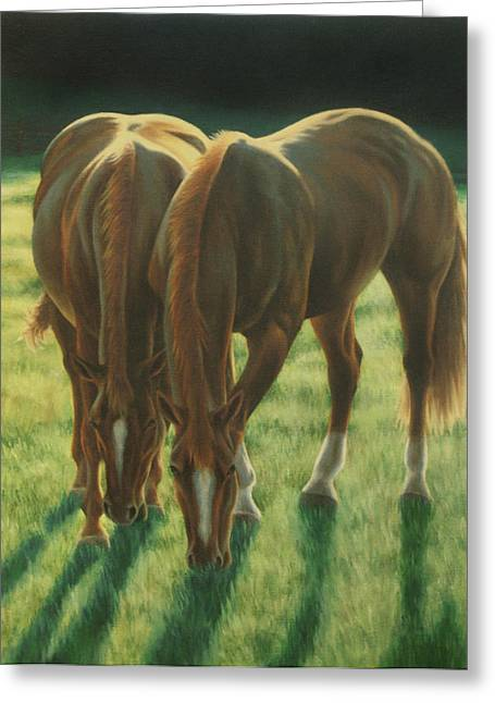 Yearling Horse Greeting Cards - The Twins Greeting Card by Karen Coombes