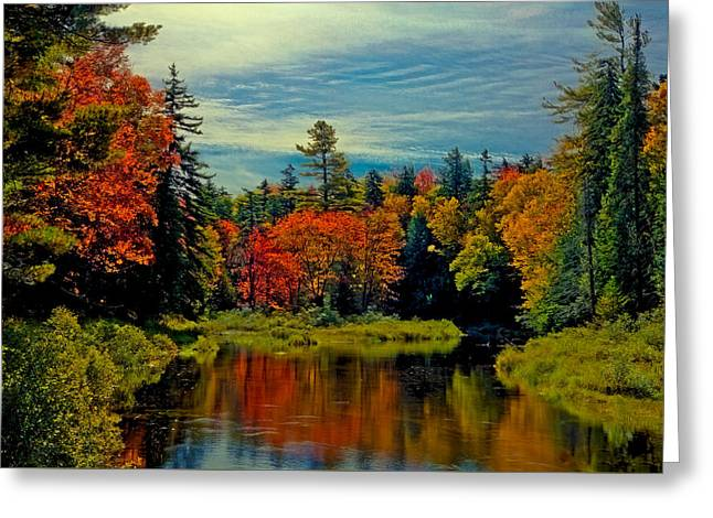 The Upper Branch Of The Moose River Greeting Card by David Patterson