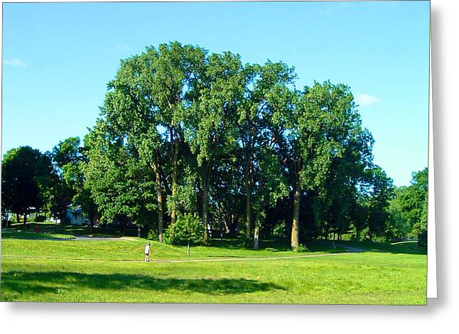 Bryant Paintings Greeting Cards - The Vastness of Cottonwoods Greeting Card by Paul Thompson