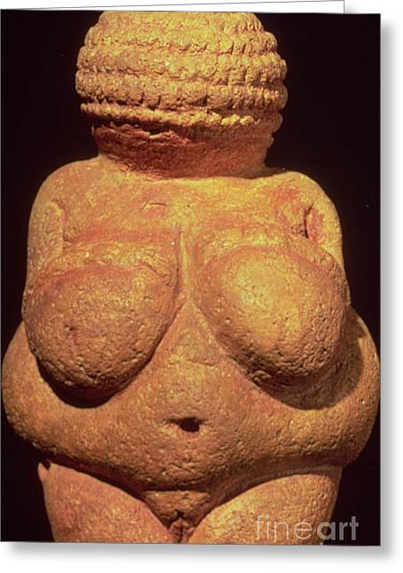 The Venus Of Willendorf Greeting Card by Unknown