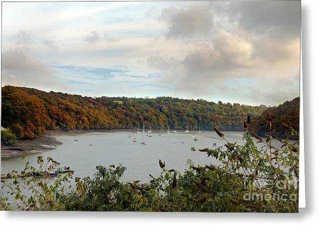 The View From Malpas Greeting Card by Terri Waters