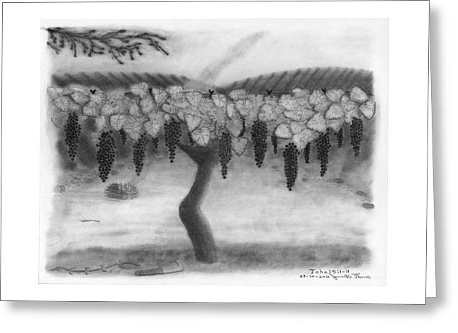 Grapevine Drawings Greeting Cards - The Vine and the Branches Greeting Card by James M Thomas