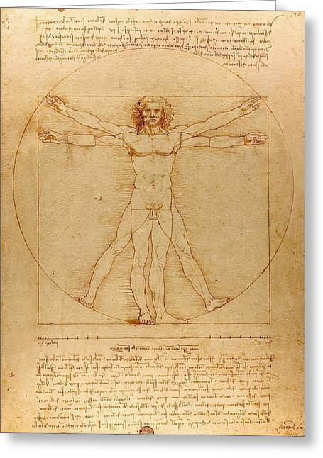 Anatomical Drawings Greeting Cards - The Vitruvian Man Greeting Card by
