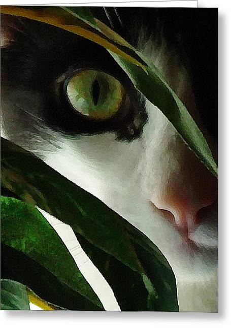 Housecats Greeting Cards - The  Voyeur Greeting Card by Lynn Andrews